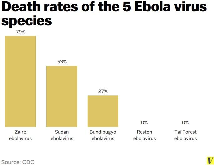 Ebola: i diversi ceppi del virus e la relativa mortalità (Vox.com)