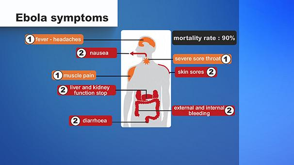 ebola italia epidemia