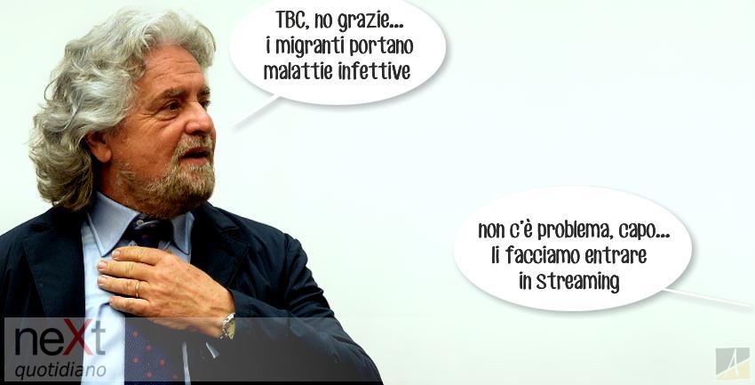 Grillo tbc
