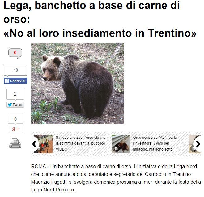 lega banchetto orso