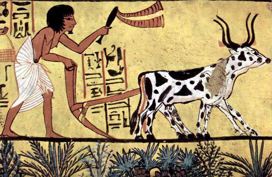 aratro-egizio