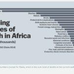 Principali cause di morte in Africa (fonte: Vox.com)