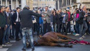 cavallo caduto via del corso
