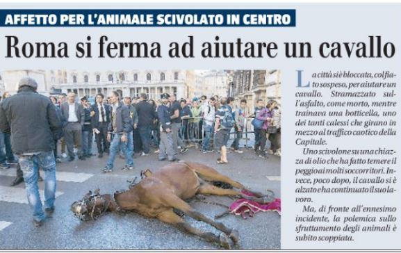 cavallo roma
