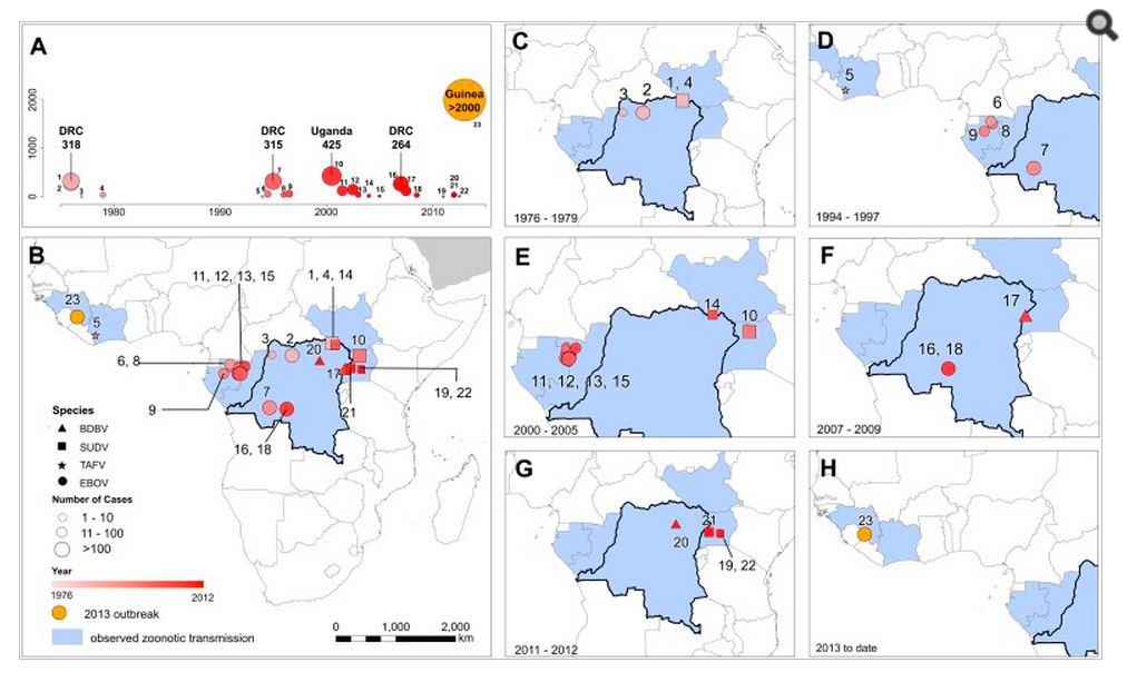Mappa delle epidemie di Ebola (fonte: http://www.ncbi.nlm.nih.gov/)