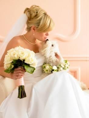 sposa-cane