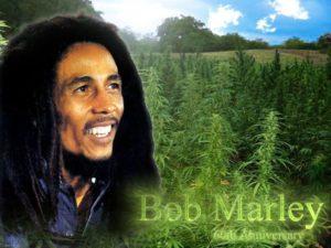 bob marley marijuana 1