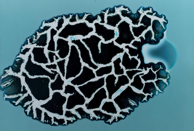 droghe microscopio ecstasy