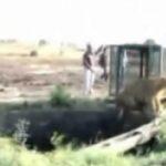 leone pozzo 4