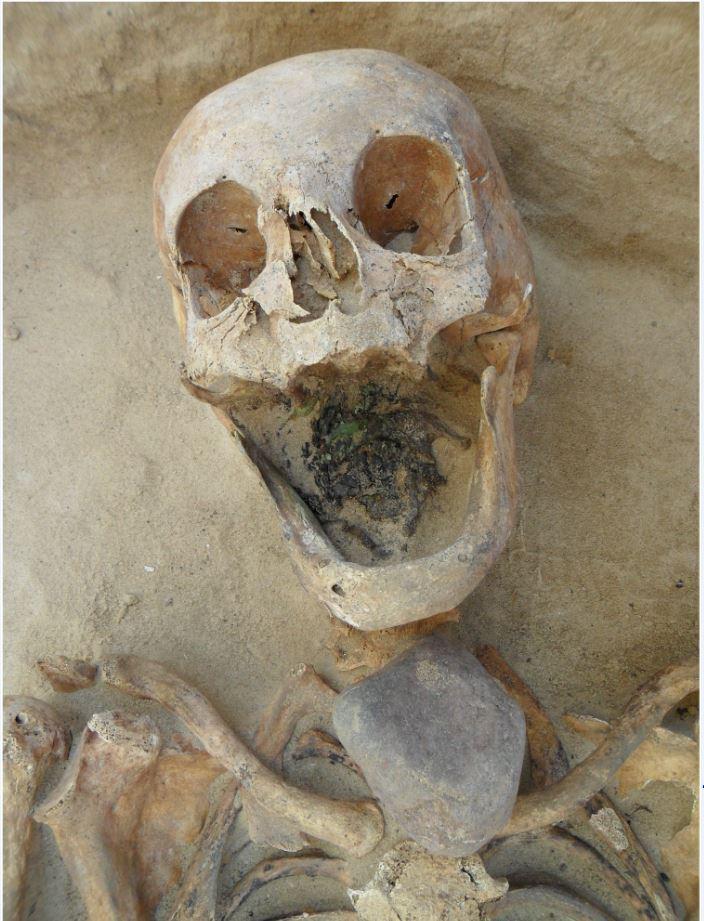 Lo scheletro di una donna di mezza età ritrovata a Drawsko con una pietra sulla gola per prevenire il vampirismo.  (fonte: http://www.plosone.org/article/info%3Adoi%2F10.1371%2Fjournal.pone.0113564)