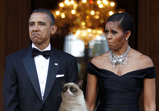 I coniugi Obama e il Grumpy Cat