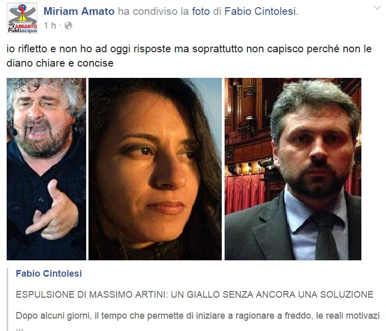 miriam amato movimento 5 stelle 2
