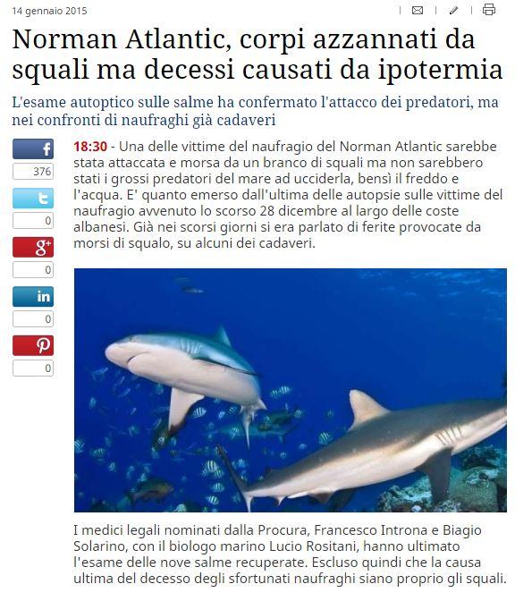 La notizia così come è stata riportata dal TG Com (fonte: tgcom24.mediaset.it)