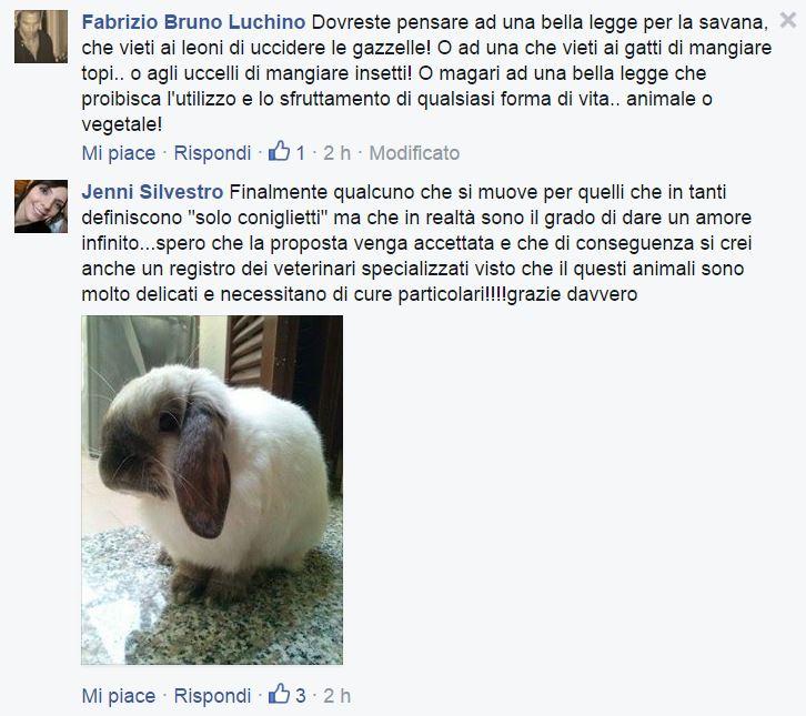 michela brambilla conigli 1