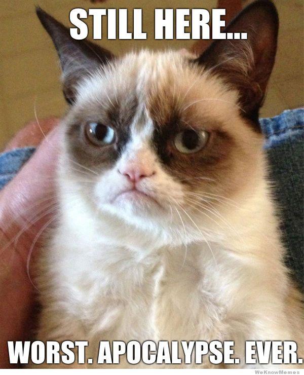 grumpy-cat-apocalypse-meme-2