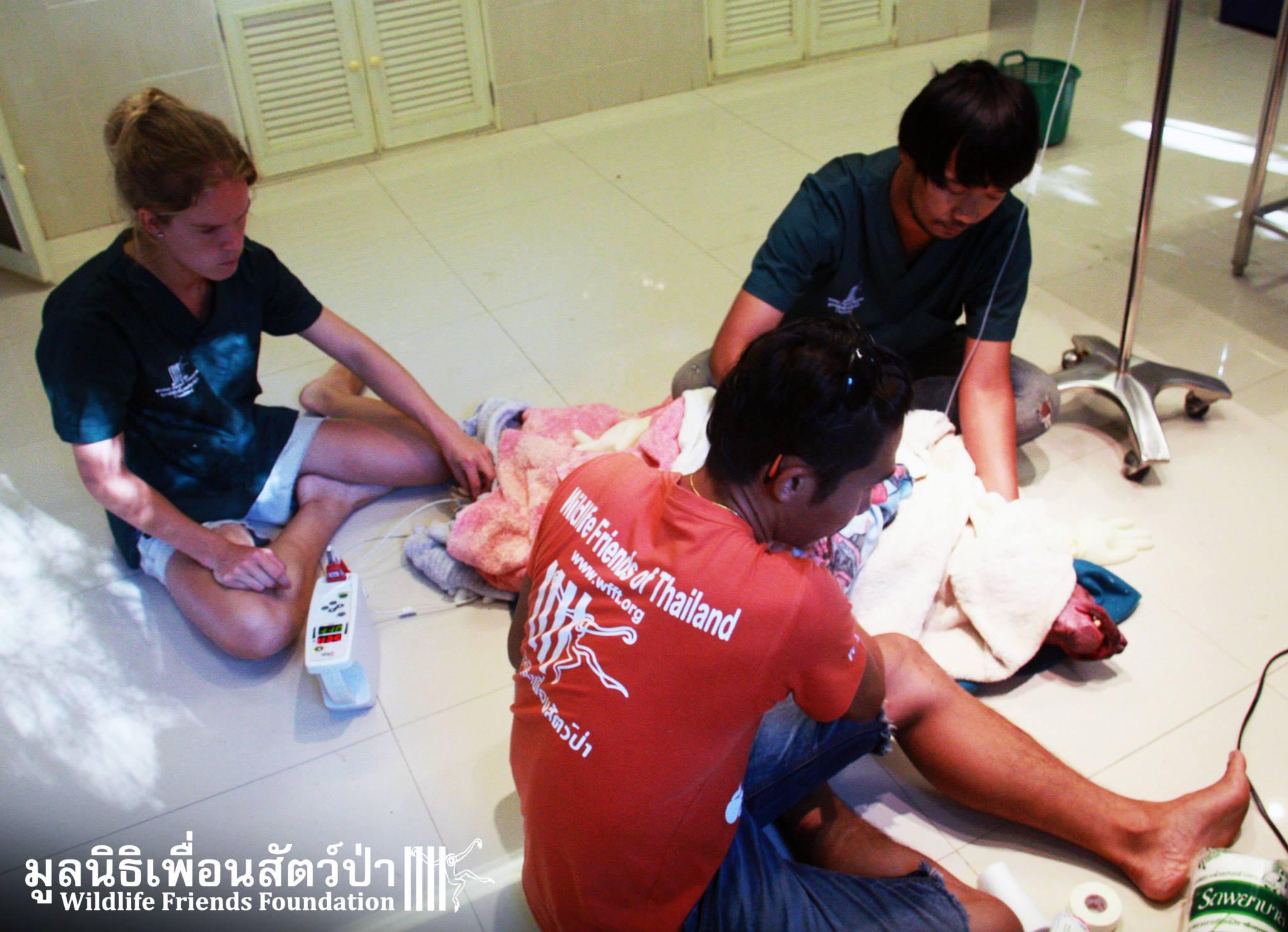 I volontari mentre prestano le prime cure a Kwan (fonte: Facebook.com)