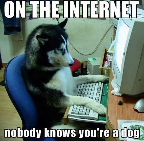 venerabilis internet anonimato
