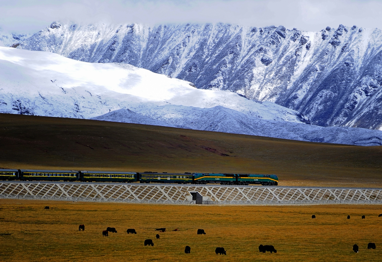 "Un tratto della linea ferroviaria Qinghai–Tibet (fonte: ""Qingzang railway Train 01"" by Jan ReurinkCamera location30° 11′ 54.4″ N, 90° 37′ 02.1″ EView this and other nearby images on: OpenStreetMap - Google Earth - originally posted to Flickr as Chinese train takes control over Tibet. Licensed under CC BY 2.0 via Wikimedia Commons - http://commons.wikimedia.org/wiki/File:Qingzang_railway_Train_01.jpg#/media/File:Qingzang_railway_Train_01.jpg"