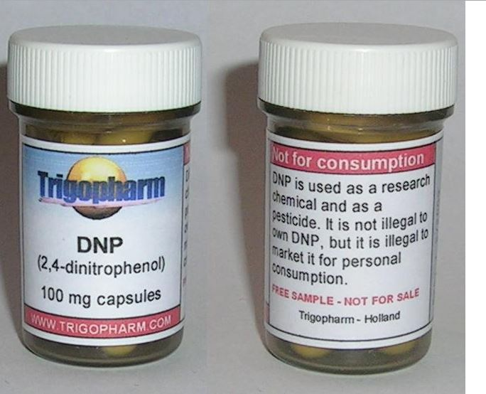 dnp decessi dinitrofenolo - 2