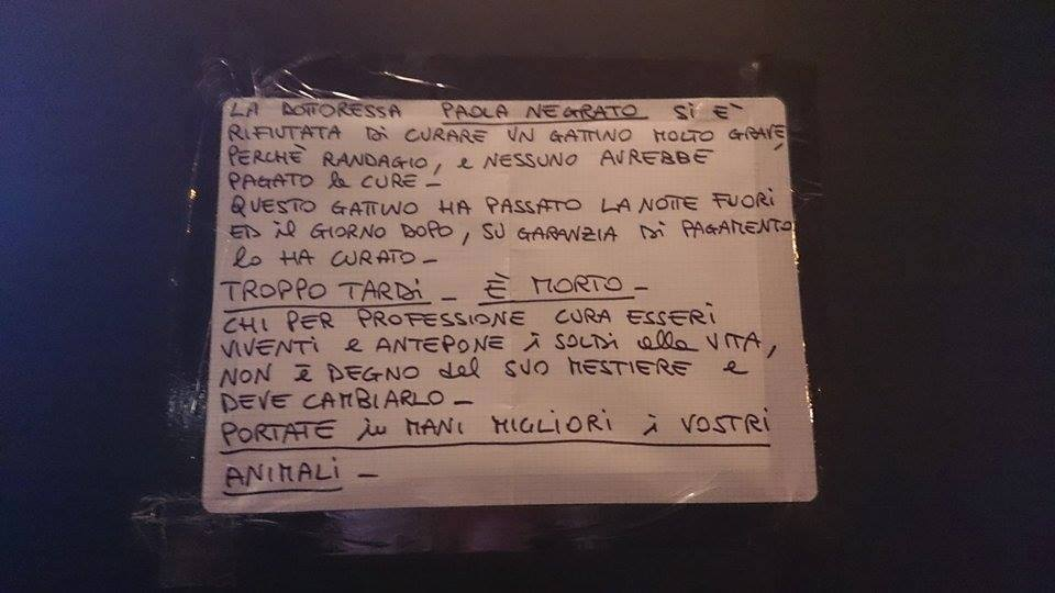fronte animalista veterinaria paola negrato 1