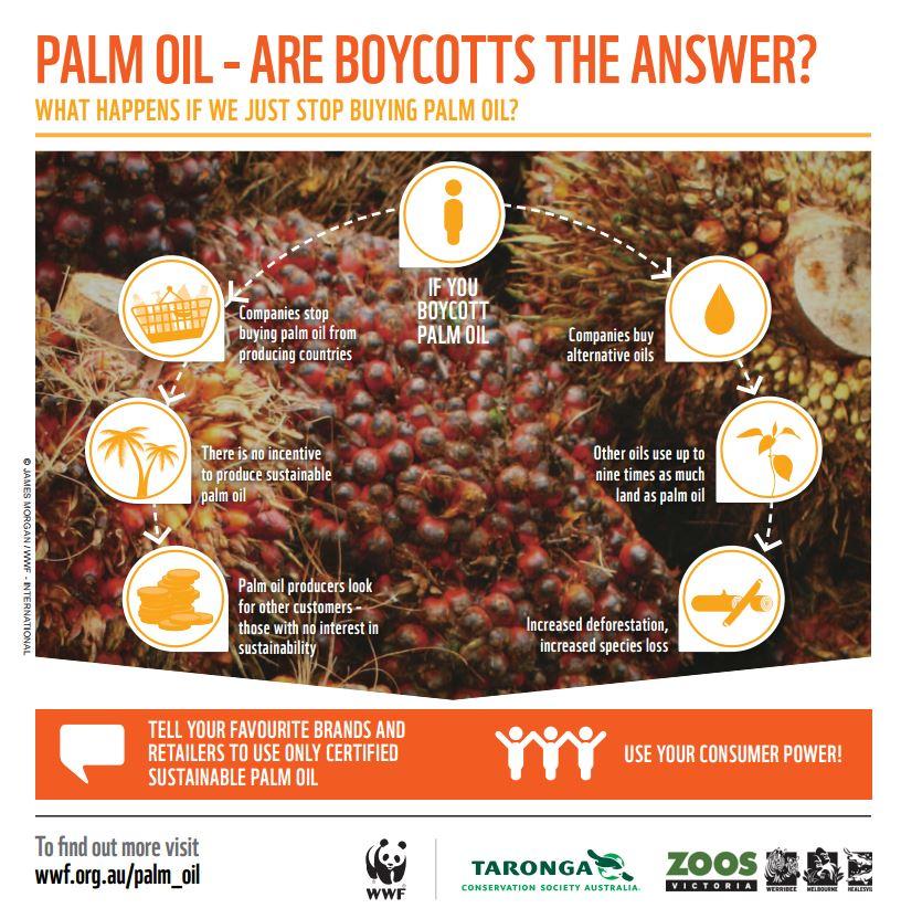 Meglio chiedere l'utilizzo di olio di palma certificato , non sarà la soluzione ideale ma è il meglio che possiamo permetterci (fonte: wwf.org.au)