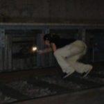 gattina elsa metro 2