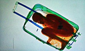 migrante valigia