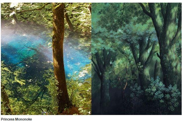 La foresta di Yakushima che avrebbe ispirato quella nella quale è ambientata la Principessa Mononoke (fonte: Dazed Digital)