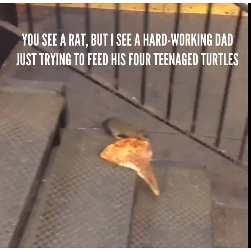 pizzarat splinder