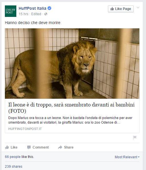 huffington post leonessa danimarca