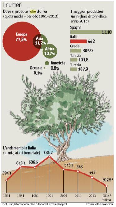 scandalo olio oliva extravergine truffa