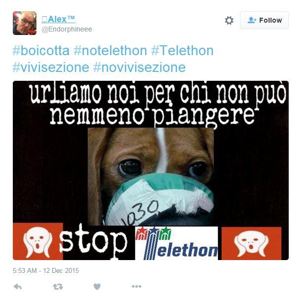 telethon vivisezione insulti - 3