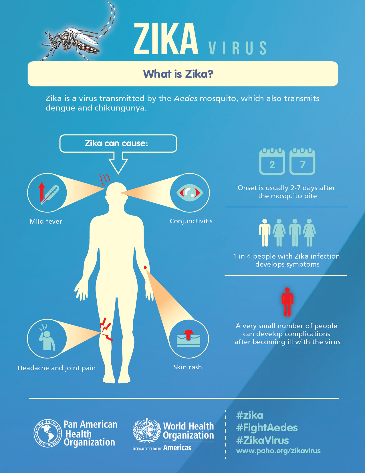 virus zika sintomi - 1