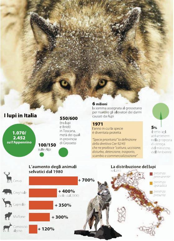 il piano per abbattere i lupi