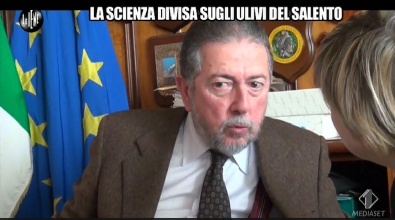 xylella salento purcell cataldo motta - 1