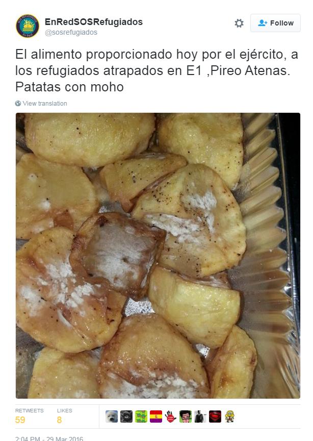 cibo rifugiati patate muffa - 1