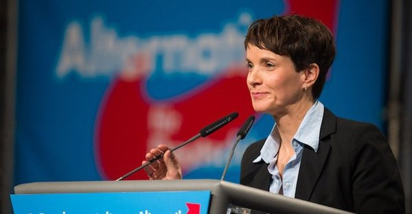 afd petry