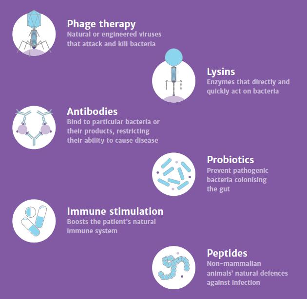 resistenza agli antibiotici morti - 6