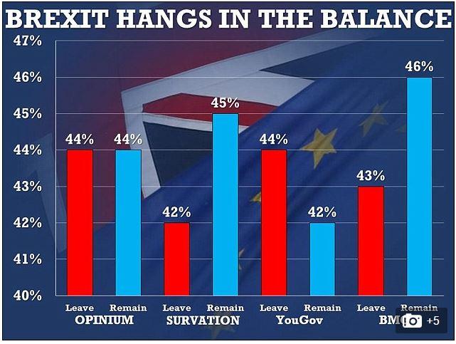 brexit sondaggi morte cox