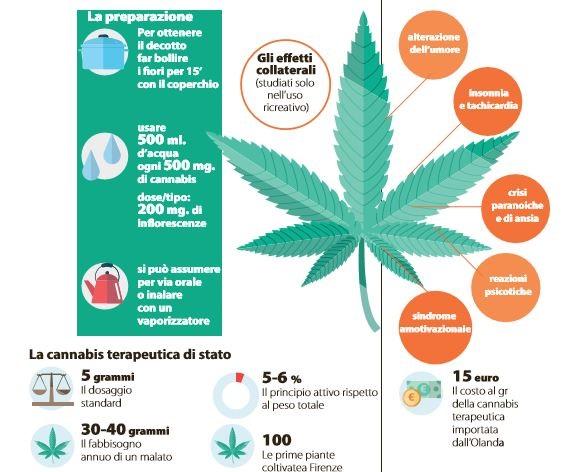cannabis stato ricette