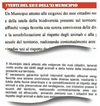 grillini municipi roma programmi uguali