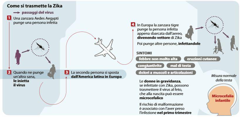 come si trasmette zika