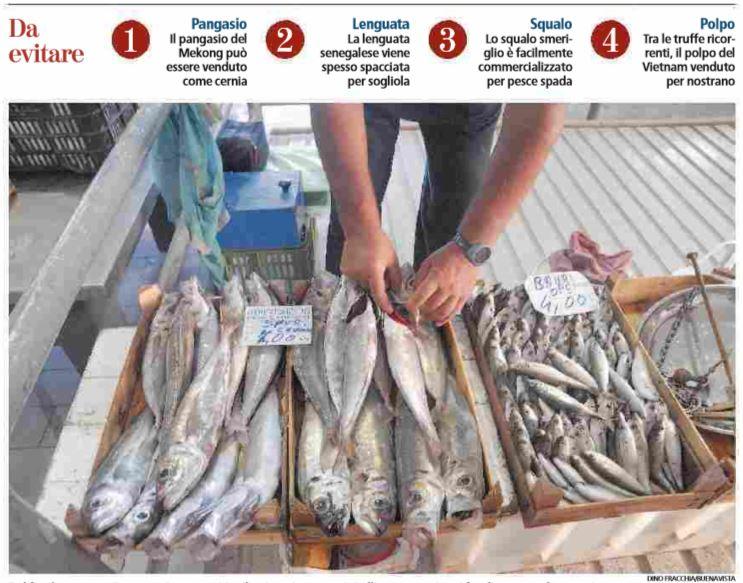 pesce truffa pescheria
