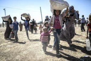 profughi lavoro