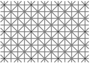 illusione-ottica-punti-neri-griglia-1