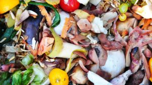 legge spreco alimentare