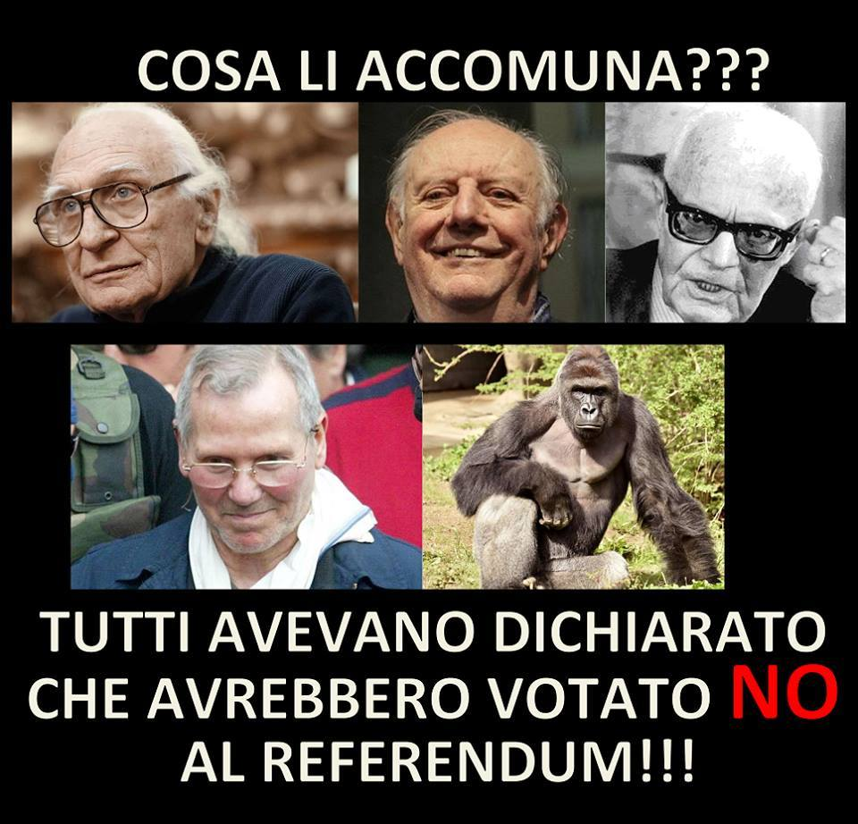 dario fo no referendum