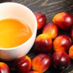 olio di palma nutella olio di palma sostenibile