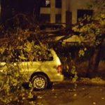 trastevere roma maltempo-danni-1