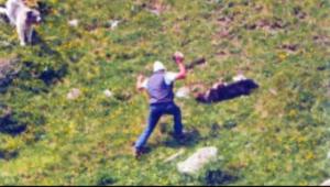 breno cane ammazzato processo assoluzione